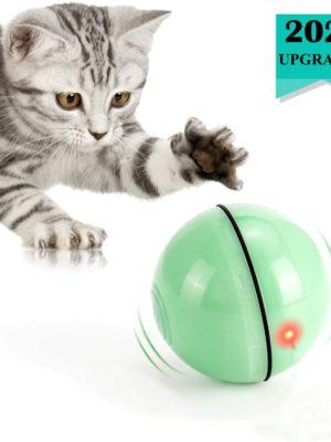 Katzenspielzeug ball