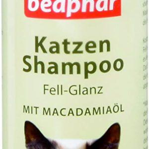 Katze Shampoo