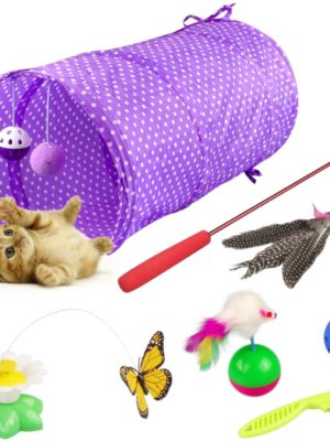 Katzenspielzeug Set