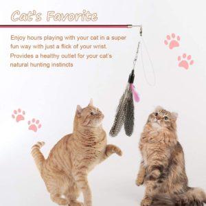 Variety Pack – Katzenspielzeug Set einschließlich Cat Tunnel